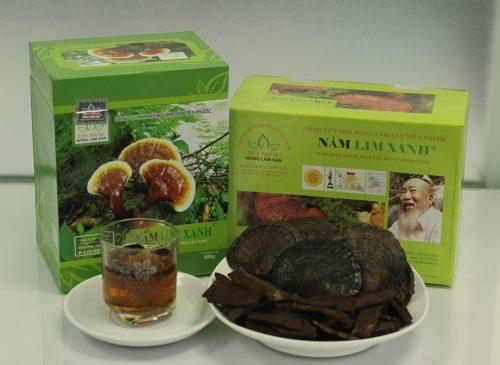 Cây nấm lim xanh rừng Tiên Phước đã qua chế biến hỗ trợ điều trị ung thư amidan.