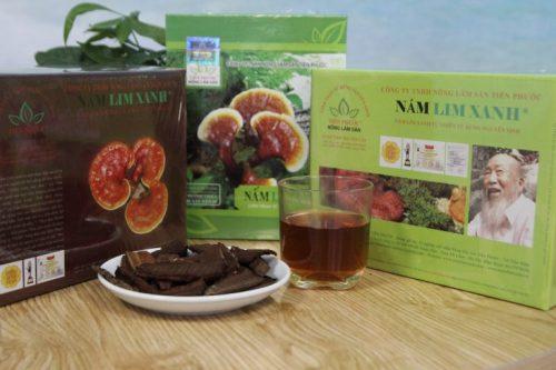 Công ty nông lâm sản Tiên Phước là 1 địa chỉ bán nấm lim xanh rừng tự nhiên uy tín