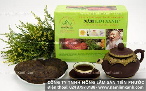 Nấm lim xanh tự nhiên loại Nguyên cây - Nông lâm sản Tiên Phước