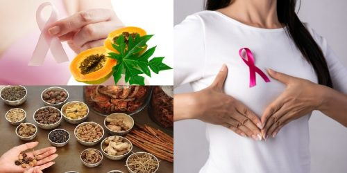 Phương pháp điều trị ung thư vú bằng Đông y