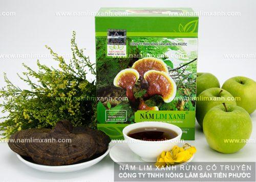 Tác dụng của cây nấm lim xanh rừng với người bị K amidan