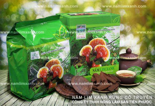 Thành phần dược chất trong nấm lim xanh tự nhiên
