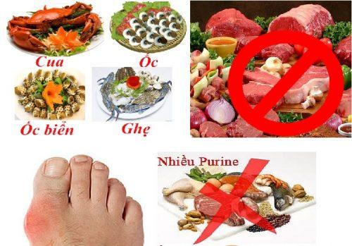 Bị bệnh gout nên kiêng ăn gì?