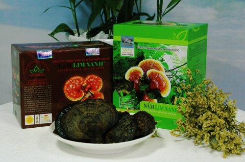 Cách nhận biết nấm lim xanh rừng thật giúp người mua tránh được sản phẩm nấm giả, nấm độc hại.