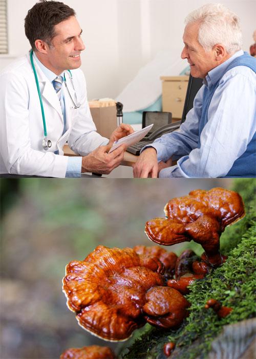 Dùng nấm lim xanh chữa bệnh tiểu đường là phương pháp an toàn, hiệu quả.