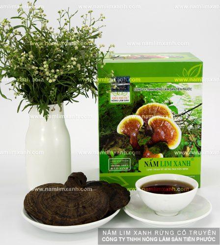 Tác dụng nấm lim xanh rừng Quảng Nam là điều trị ung thư tuyến tụy