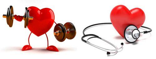 Tập luyện để phòng chống bệnh tim mạch