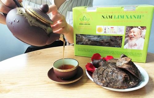 Dùng trà nấm lim xnah rừng đều đặn sẽ đem lại lợi ích chữa bệnh tật hữu hiệu