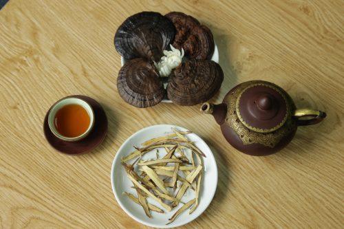 Hiệu quả của nấm lim xanh rừng chữa bệnh còn phụ thuộc vào cách sắc và liều lượng