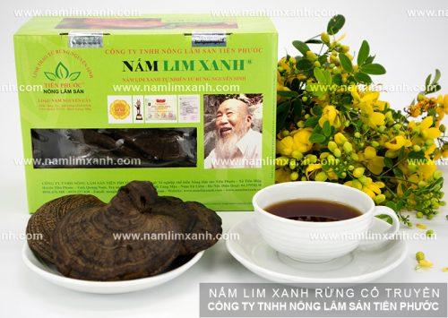 Công dụng của nấm lim rừng trong điều trị bệnh gout