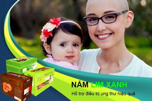 Dược chất trong nấm lim xanh có tác dụng hỗ trợ điều trị ung thư hiệu quả