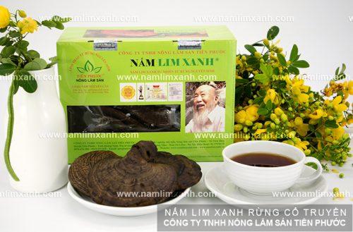 Nấm gỗ lim xanh rừng tự nhiên giải độc cho cơ thể - Cách uống nấm lim
