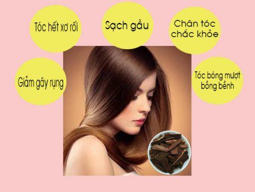 Nấm linh xanh có công dụng giúp tóc chắc khỏe, giảm xơ rối và gãy rụng.