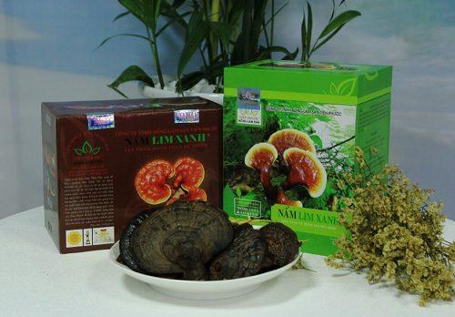 Nấm lim xanh rừng của công ty TNHH Nông Lâm Sản Tiên Phước được chế biến theo phương pháp gia truyền