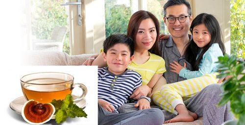 Uống nấm lim xanh bồi bổ sức khỏe là lựa chọn của nhiều gia đình.