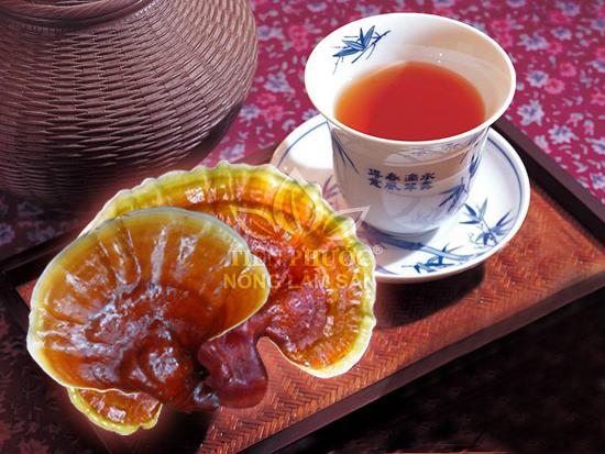 Các bài thuốc giúp giảm đau nhức khớp trong mùa đông hiệu quả