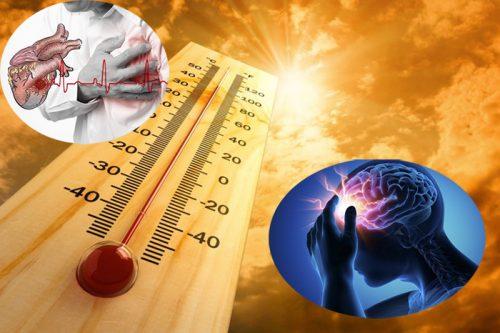 Cách phòng ngừa đột quỵ khi thời tiết nắng nóng