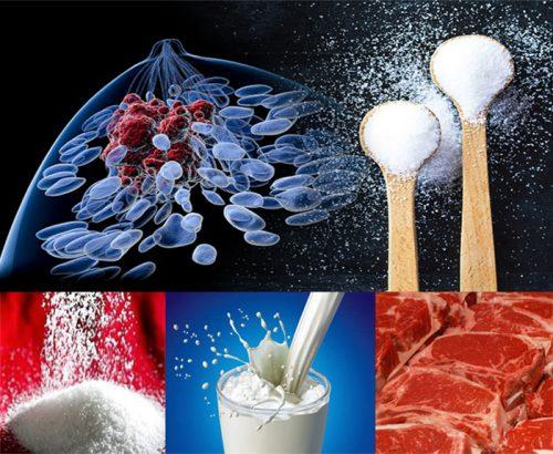 Thức ăn của tế bào ung thư