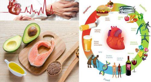 Cách giảm mỡ máu phòng bệnh tim mạch