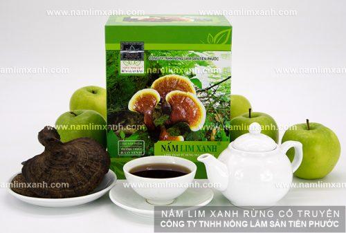 Liều lượng nấm lim xanh rừng để phục hồi, tăng cường chức năng: