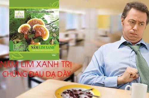 Nấm lim xanh rừng Quảng Nam giúp chứng đau dạ dày thuyên giảm.