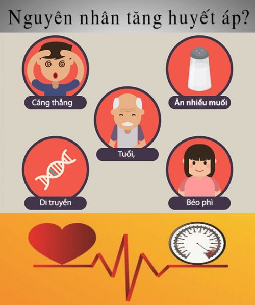 Nguyên nhân huyết áp cao