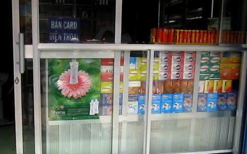 Địa chỉ bán buôn nấm lim xanh tại Quảng Trị của Công ty TNHH Nông lâm sản Tiên Phước rất uy tín
