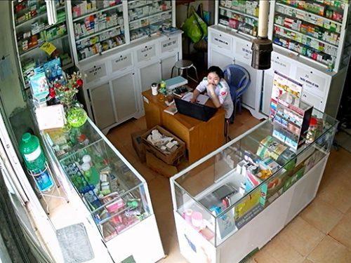 Địa chỉ bán nấm lim xanh ở Nam Định của Công ty TNHH Nông lâm sản Tiên Phước rất uy tín