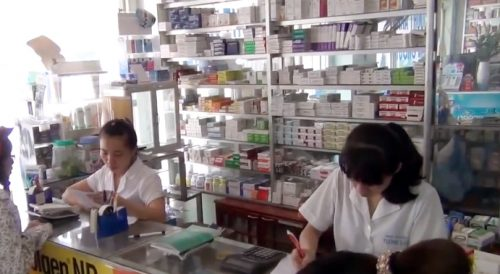 Đại lý nấm lim xanh chính hãng tại Quảng Bình.