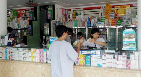 Địa chỉ uy tín bán nấm lim xanh ở Bắc Giang