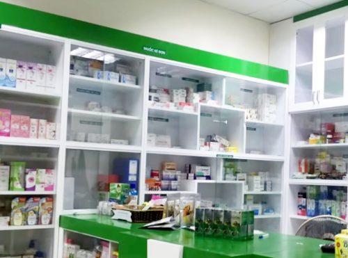Địa chỉ mua nấm lim xanh uy tín, chất lượng ở Hà Tĩnh