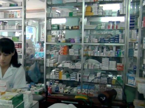 Địa chỉ tin cậy mua nấm lim xanh tại Quảng Ninh