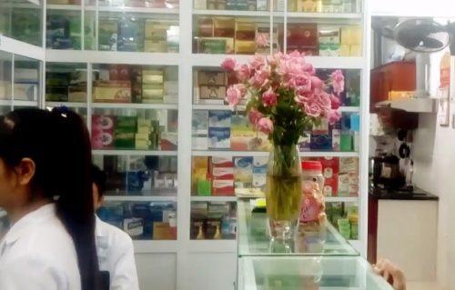 Nơi bán nấm lim xanh ở Phú Yên của Công ty Tiên Phước rất uy tín