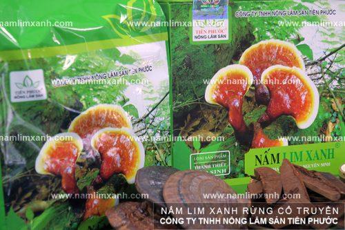 Sản phẩm nấm lim xanh rừng được bán tại Nam Định