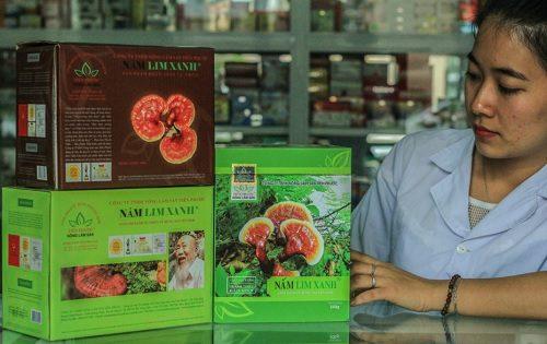 Cách dùng nấm lim xanh thế nào để phát huy hiệu quả chữa bệnh?