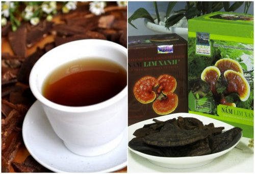 Cách sắc, uống nấm lim xanh rừng đã qua chế biến rất đơn giản, tốt cho sức khỏe.