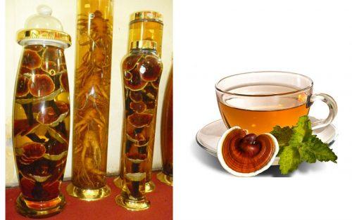 Nấm lim xanh ngâm rượu và nước sắc nấm lim xanh là 2 cách chế biến nấm lim hiện nay.