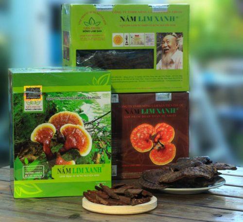 Các loại nấm lim xanh rừng đã qua chế biến của Công ty TNHH Nông lâm sản Tiên Phước.