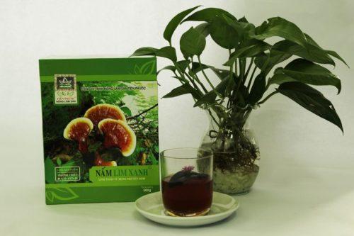 Công ty nông lâm sản Tiên Phước luôn bán nấm lim xanh rừng Thanh Thiết Bảo Sinh đúng giá