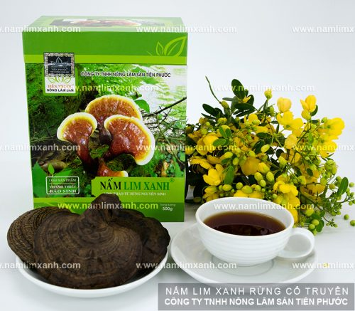 Giá bán nấm lim xanh của Công ty TNHH Nông lâm sản Tiên Phước