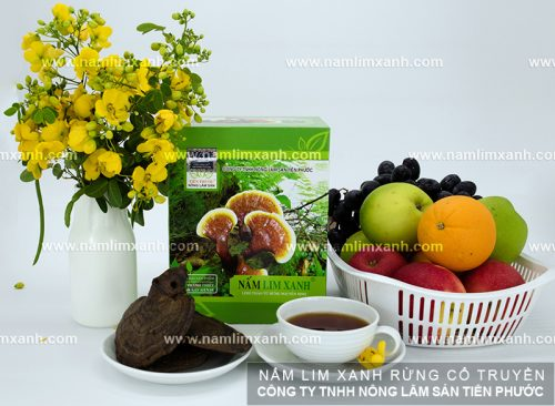 Giá nấm lim xanh rừng của công ty Tiên Phước