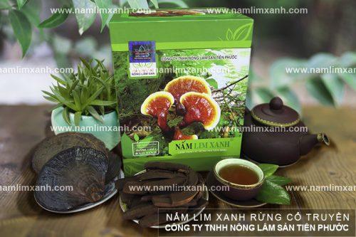 Giá nấm lim xanh rừng Quảng Nam là thắc mắc của nhiều người.