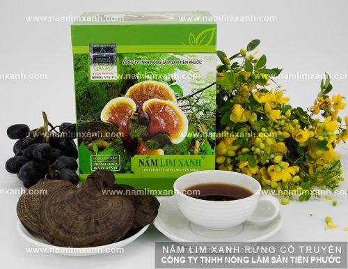 Hình ảnh nấm lim xanh rừng của công ty Tiên Phước