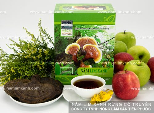 Nấm lim xanh của công ty TNHH nông lâm sản Tiên Phước