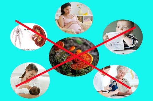 Phụ nữ mang thai, trẻ nhỏ dưới 2 tuổi... là những đối tượng không được dùng nấm lim xanh.