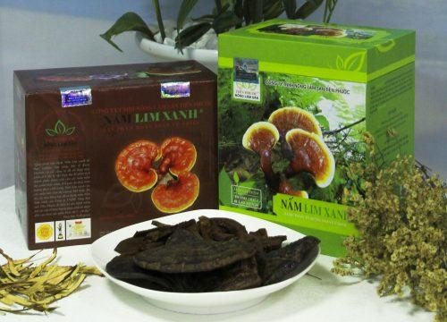 Nấm lim xanh rừng giá bao nhiêu tiền 1kg tùy vào loại sản phẩm.