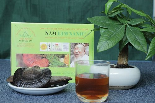 Sản phẩm nấm lim xanh rừng Tiên Phước mang lại công dụng rất tốt cho người sử dụng
