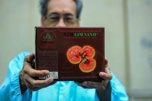 Nấm linh xanh rừng mua ở đâu? Sản phẩm nấm linh xanh rừng của công ty Nông Lâm Sản Tiên Phước đáp ứng được yêu cầu của khách hàng.