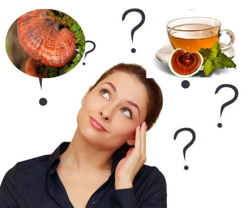 Uống nấm lim xanh rừng tự nhiên như thế nào đúng nhất?