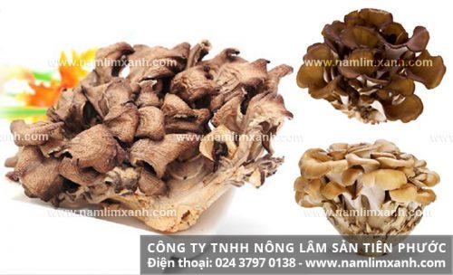 Cách dùng nấm maitake và lưu ý khi sử dụng nấm để đạt hiệu quả